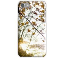 An Autumn's Afternoon II iPhone Case/Skin