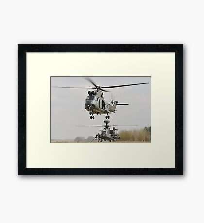 puma and apache Framed Print