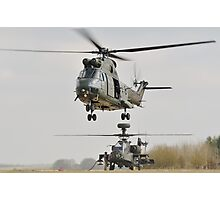 puma and apache Photographic Print
