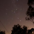 30 second exposure at night sky by Alex Colcheedas