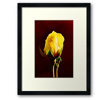 Yellow on Red Framed Print