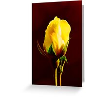 Yellow on Red Greeting Card