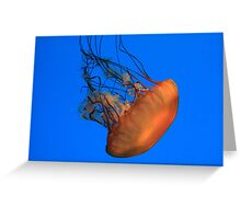 Jellies Invasion Greeting Card
