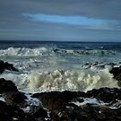 Splash ~ Oregon Coast ~ by Charles & Patricia   Harkins ~ Picture Oregon