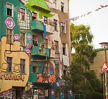 berlin squat by shannon browning