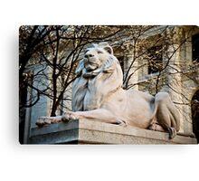 Lion-New York Public Library Canvas Print