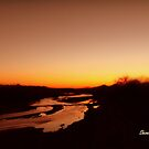 Sunset over a river by Shiva77