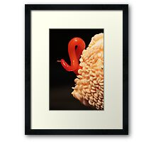tiny one, but highly fertile! Framed Print