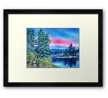 pine island Framed Print
