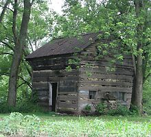 Log Cabin Demossville, Ky. by Ron Russell