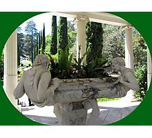 Lovely sculptures  Photographic Print