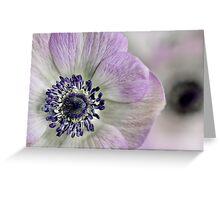 Fresh Anemones... Greeting Card