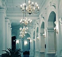 The Raffles Hotel, Singapore by Tamara Travers