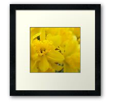 Love Notes... Framed Print