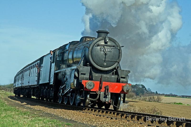 45337  by Beverley Barrett