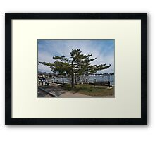 Overlooking Wickford Harbor Framed Print