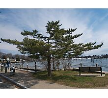 Overlooking Wickford Harbor Photographic Print