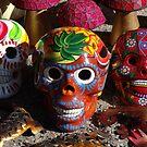 Wonderful Skulls - Calaveras Coloradas by Bernhard Matejka
