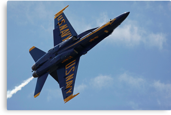 Blue Angels  by kathy s gillentine