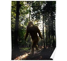 Squatch Poster