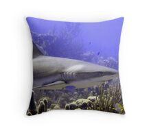 Shark Swimming Past Throw Pillow