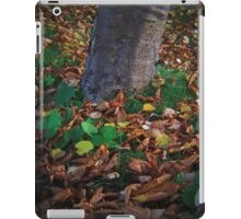 Lomo : Earth Root. iPad Case/Skin
