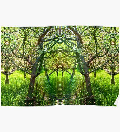 Fairy Arbor Poster