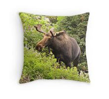 Bull Moose Side Shot  Throw Pillow