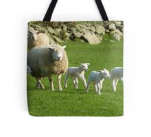 The Noise Of The Lambs Tote Bag