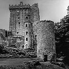 BLARNEY CASTLE,   COUNTY CORK,  IRELAND............! by Roy  Massicks