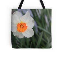 Multi-colored Daffodil Tote Bag
