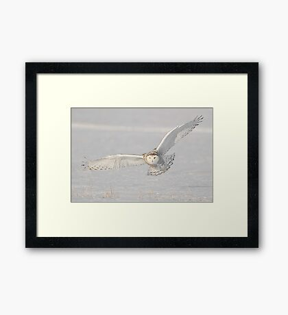 Coming for You  Framed Print