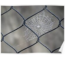 Web and Wire Poster