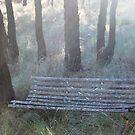 Take a seat..... by Julie Sherlock