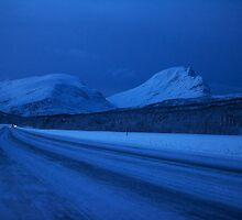 ALL ARCTIC by Bodil Kristine  Fagerthun