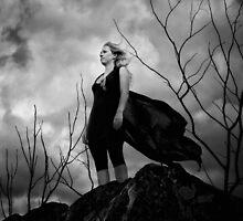 Venus by Jillian Merlot
