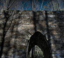 Looking Up At The Bridge by David Misko