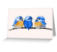 Whimsical Baby Bluebirds Greeting Card