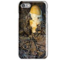 freshly born iPhone Case/Skin