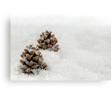 Fir Cones in a Snow Scene Canvas Print