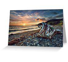 Coromandel Sunset Stump Greeting Card