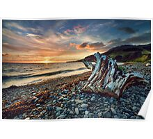 Coromandel Sunset Stump Poster