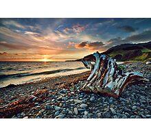 Coromandel Sunset Stump Photographic Print