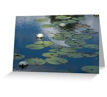 Water Lily #2 Greeting Card