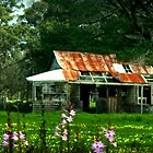 Wild flowers and an old farmhouse by myraj