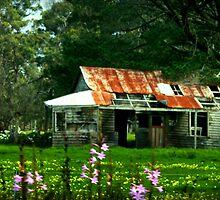 Wild flowers and an old farmhouse by myraj
