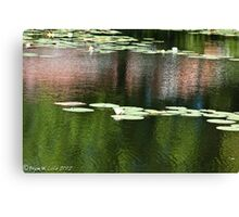 Water Lily #5 - reflections on a pond Canvas Print