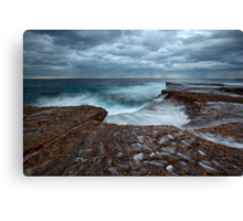 Sea Shells and Pockets - North Curl Curl, NSW Canvas Print