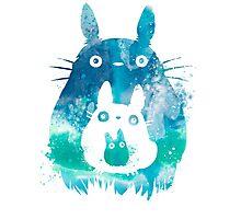 Totoro - Blue Sky Photographic Print