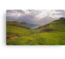 Lush green hills. Canvas Print